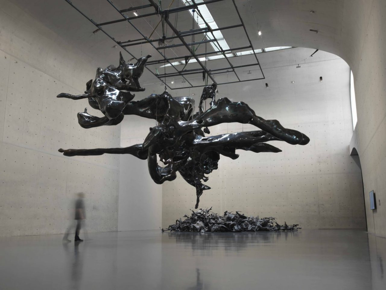 Zhan Wang: Forms in Flux